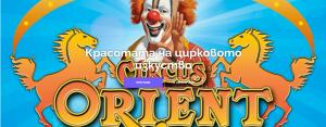Как работим? Сайтът на Цирк Ориент