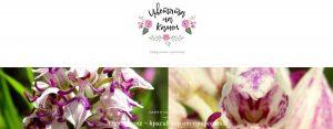 Сайтове за малък и семеен бизнес - как работихме по Цветята на Камен